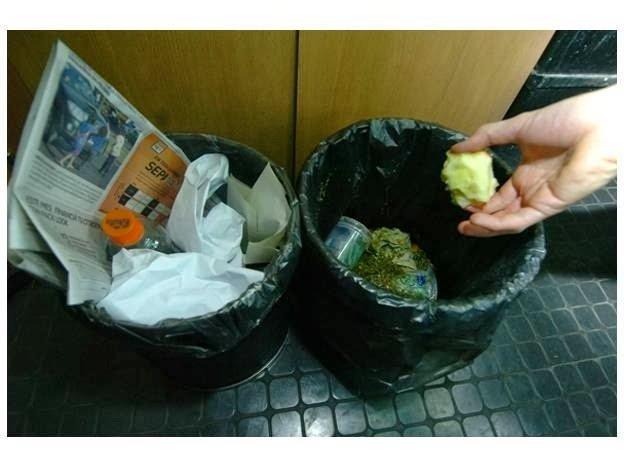 Cuidados al manejar los residuos de basura organica e inorganica